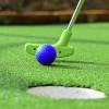 Bild: Mini-Golf-Anlage