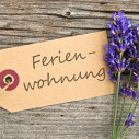 Bild: Miriam Barth Vermietung von Ferienhäusern in Köln