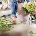 Narzis und Goldmohn Blumen