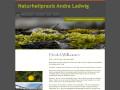 Bild: Naturheilpraxis Andra Ladwig in Magdeburg