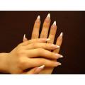 Passion Nails Anna Volnov