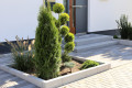 Bild: Patrick Seier - Gartenpflege Peppopilz in Dortmund