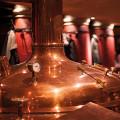 Pauls Spezialitätenbrauerei & Destille GmbH Destille