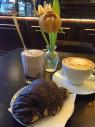 https://www.yelp.com/biz/philine-boulangerie-francaise-kiel