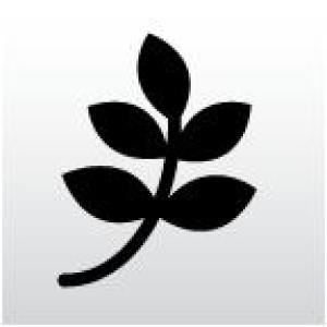 Logo Physiotherapie, Bruch Manuela