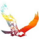 Logo Pikula, Boris