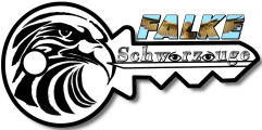 Logo für Schlüsseldienst Neukölln Falke Schwarzauge
