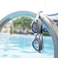 Seelöwen-Schwimmschule