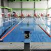 Bild: Seelöwen-Schwimmschule