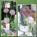 Stil`leben Blumen