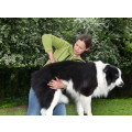 Tierarztpraxis Garre