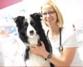 Bild: Tierarztpraxis Kerstin Büttner in Oberhausen, Rheinland