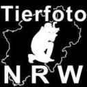 Logo Tierfoto-NRW Magnus Pomm