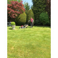 Tip Top Gartenpflege