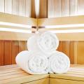 Treibhaus Sauna