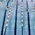 Treptow Hallenbäder Schwimmhalle Baumschulenweg Schwimmbäder