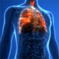 Bild: Vladimir Lomidze Facharzt für Innere Medizin in Potsdam