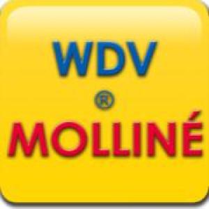 Logo WDV-Molliné GmbH