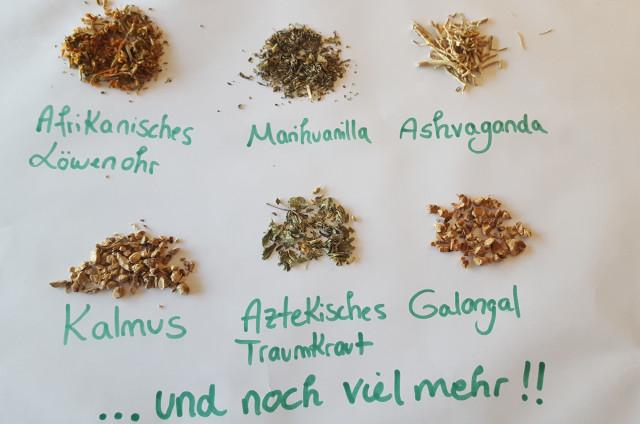 Bild: www.Dreamherbs.de       in Maxdorf, Pfalz